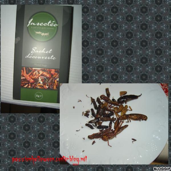 Cuisine insectes - Insectes dans la cuisine ...